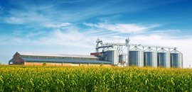Grain Storage & Handling (in farms)